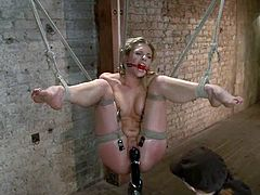 Awesome blonde Bailey Blue is having fun with some hot mistress. The dominatrix binds and suspends Bailey and pleases her with fisting and toying.