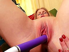Blonde porn diva Avril Hall gives a closeup view of her love box as she masturbates