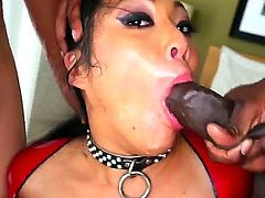 Hot asian babe mya sucks a huge cock and later swallows it whole in a deepthroat.