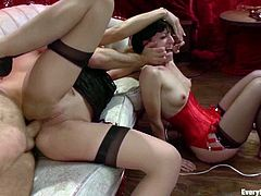 Sexy brunette in stockings gets fucked hard in her ass
