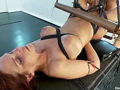 Slender babes are enjoying their hot BDSM perversions