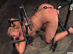 The blonde Mellanie Monroe is having her snatch toyed while she's in doggystyle position thanks to the bondage devices this fella uses to dominate her.