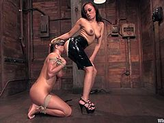 Annie Cruz is having fun with Trina Michaels in a basement. Annie binds Trina and makes her lick her snatch and then she toys Trina's vag and pounds it with a srapon.