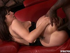 What a hottie Bobbi Starr is! Babe calls her black fuck buddy and tells him that she wants some choco cock! He comes to her place and bangs her so hard.