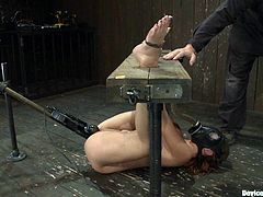 A kinky fucking whore gets tied up and totally toyed with in this super kinky bondage scene right here, check it out! It's perverted!