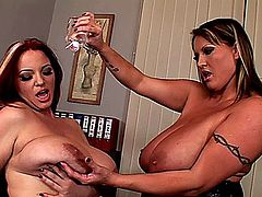 Laura M. and Joanna Bliss Office Busties