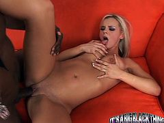 Gorgeous and kinky blondie Bree Olson is a high profile porn star and here is a piece of her work with a black cock! Oh, man she is such a stunner!