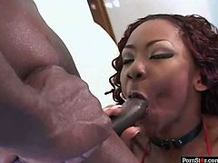 Delicious black candy gives steamy deepthroat to horny dick