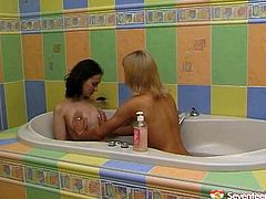Sextractive Russian babes with slim sexy bodies strip in the bath. They lies in the bath tub together getting wet and soapy. Watch two sizzling babes caressing each other in a hot teen lesbo sex clip.
