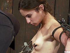 A couple of horny fucking chicks get fucking naked and abused in this fucking bondage scene with devices of perversion!!