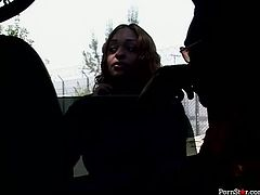 Busty ample mulatto bitch in steamy red lingerie and fishnet stockings gets picked by a horny black dude in the street. She takes off her clothes in front of him to expose juicy oversized tits and curvy frame covered with red lingerie and fishnet stockings.