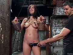 Holly Michaels is made by her master to balance two heavy buckets of bricks. She's doing her best but she can't hold it for very long, especially when she has tight nipple clamps on and her boobs. The master is using a vibrator on her vagina at the same time, making the situation more difficult.