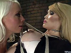 Blonde mommy Lee got Eva hanging where she wanted. Eva is a sensual blonde shemale with a pair of big sexy breasts and a hard cock that our milf drools for. She licks the shemale's feet and then cuts her dress with a pair of scissors so she can have access to her hard cock. Yeah, look at her sucking the shemale.
