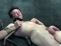 Derrick gets tied up and toyed in his ass by Nika Noire
