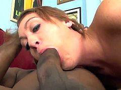 Justin Long and Lee Band enjoy fucking hot white babes. Thats why Kasmine Cash is sucking off one of them while her pussy is drilled from behind.