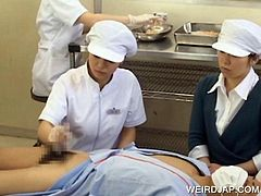 Sweet Japanese nurse rubbing a thick hairy dick