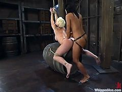 Two smoking hot sirens are having some nice time. Missy Monroe loves dominating over Sandra Romain and she gives her some ridiculous feelings!