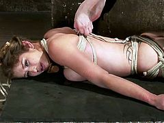 This amazingly hot and sexy babe Felony is under so torture! She gets tied up and suspended up high. Damn that is so fucking crazy to watch!