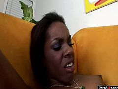 Desperate whore Carmen hayes, Dena C and Kim are fucking hardcore in a dirty lesbian 3some sex video. One of the slut is wearing strapon banging her lover doggy style while she is licking another chick.