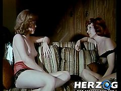 Sluts are having their hairy twats nailed right in superb vintage porn sessions