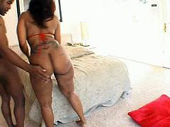 Amazing sexy black owner of big appetizing ass goes wild. This weird hottie desires to get her wet cooch eaten and then fucked doggy for multiple orgasm right on the sofa.