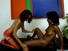 These black girls with small tits are all over each other, kissing and undressing each other. Check out this awesome lesbian sex scene now to see what else these torrid gals are up to.