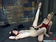 Sexy brunette chick gets spanked and tortured with clothespins. After that she also licks a strap-on and gets her pussy stuffed with it.