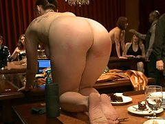 Curvaceous chick sits on a table. Her master fixes clothespins to her mouth and claws to her tits. Later on she sucks big dicks and gets her pussy licked.