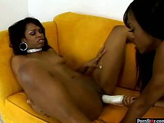 Vanessa Money is lustful bitch who loves hardcore lesbo fuck sessions. So she goes nuts in this steamy porn clip getting her muff pounded bad with big fat sex toy.