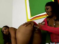 Sexy ebony babes wearing pink body fishnets dildo fucks each others black pussies with transparent wavy dildo toy. watch exciting lesbian sex tube scene right now and be pleased with jaw dropping booty black bitches.