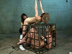 Superb girls strip their clothes off and get tied up by their mistress. After that they lick each others pussies and get tortured with electricity.