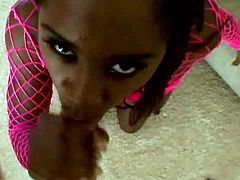This ebony adult actress looks awesome in pink body fishnet. She stands on her knees and gives her sex partner eager blowjob and tug job.