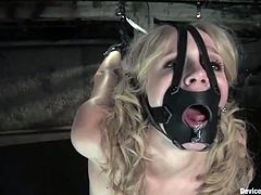 Sexy brunette girl gets tied up and gagged with a muzzle gag. Later on she gets her tits clothespinned and pussy toyed.