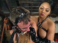 The Asian Mika Tan is dominating a guy in this video, torturing his cock and strapon fucking his ass in this femdom BDSM vid.