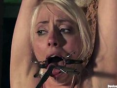 Kinky blonde Lorelei Lee gets tied up in some weird place. Then some guy puts clothes pegs onto Lorelei's tits and tongue and enjoys the way the bitch moans.