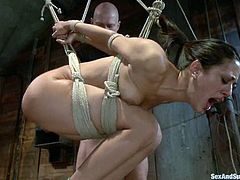 Slim and hot brunette girl gets tied up and suspended. After that she also gets her pussy lips fixed with claws. She also sucks a cock and gets fucked from behind.
