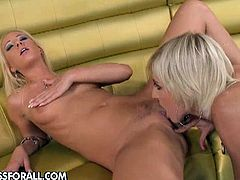 Luscious blondes toying each other