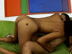 Hot blooded black lesbians throw dirty sex games. They hand stroke each other's slender bodies before they starts eating each other's soaking pussies in Pornstar sex clip.