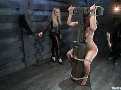 Superb Anikka Albrite lies on a couch with her legs wide opened being tied up by Aiden Starr. She gets her pussy tortured with claws and ass whipped. Then Anikka gets her pussy fisted deep.