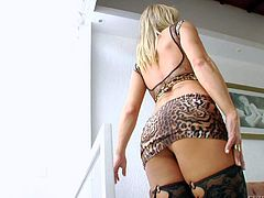 Danika Dreamz, Samantha Q, Anna Hickhiman, Soraya Sucesso XXL are all hot shemales with rock hard dicks that do wild things in front of the camera in this steamy compilation.