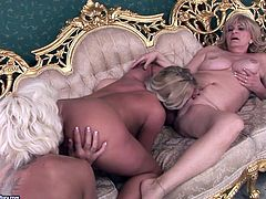 Two curvy blond matures welcome tongue fuck from lustful lesbian