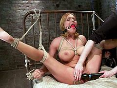 Curvaceous Krissy Lynn gets dominated and toyed