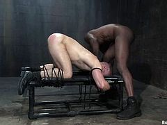 Both the black guy as the white guy are going to dominate and be dominated in this gay BDSM video where they share treats.