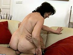 Oversized old BBW rides kinky dad in reverse cowgirl style