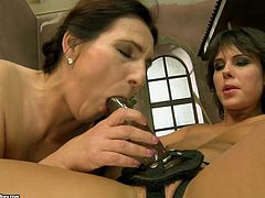 Hussy brunette lesbian enjoys steamy sex fun with young sweet chick. Two lesbians test new strapon device. Just click here and be ready for steamy lesbian sex video.