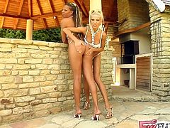 See the hot blonde Clara and the naughty ebony goddess Black Diamond taking turns fisting each other's clams till they both reach squirting orgasms.