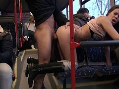 This sexy brunette is not shy and she can receive cock where ever she wants, this fucker is ready to destroy her cunt in that public bus.