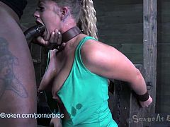 Enjoy a hell of a compilation where some brunette and blonde slaves get bound and fucked by perverse masters ready to humiliate them sexually.