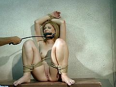 Welcome to enjoy steamy 21 Sextury xxx clip. Kinky blond haired nympho is fond of bondage and rough sex. So horny man ties her up with ropes. Pale booty chick with small tits is gagged and gets her soaking pussy tickled right away.