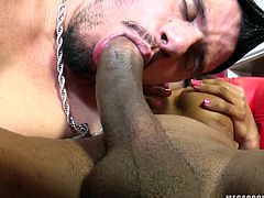 Shemale Daphynne has a big hard cock that boys, like this one, can't help themselves not to suck and lick. The bitch gladly gives him her dick and the guy, slides his lips around it, like it's candy. He sucks that cock with so much pleasure and passion, that surely the shemale will give him a load of cum at the end
